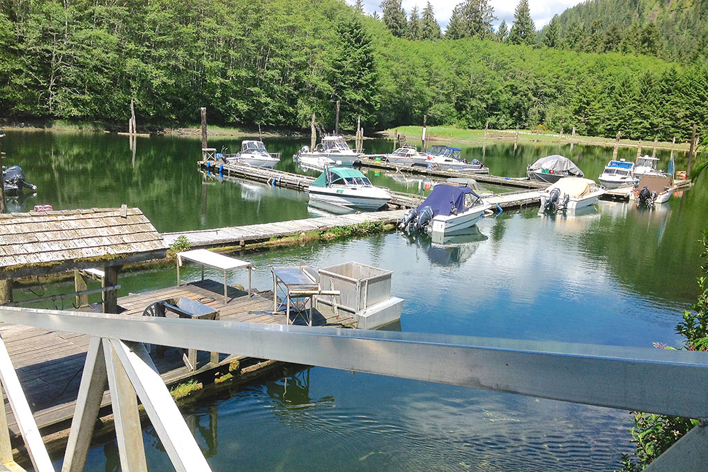 Port-Renfrew-Marina7