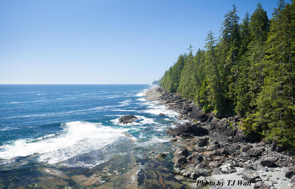 West_Coast_Trail13