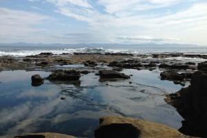 Botanical_Beach54
