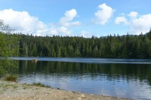 Lizard_Lake10