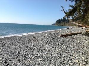 Sandcut_Beach6