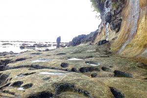 Botanical_Beach39