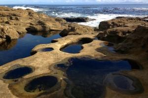 Botanical_Beach46