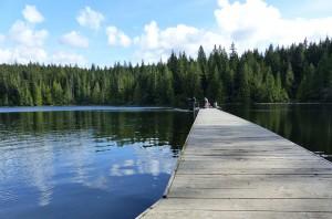 Lizard_Lake6