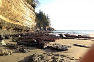 Mystic_Beach18