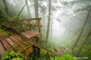 West_Coast_Trail1